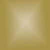 Strijkapplicatie flex gold
